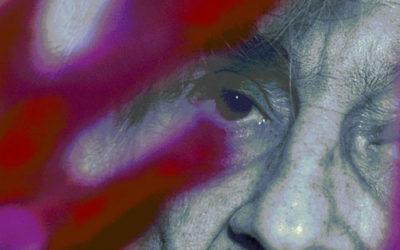 Fabrizio Bertuccioli: tra vissuto e pensato